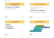 Els processos morfològics