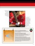 evalue su yacimiento - Halliburton - Page 3