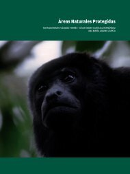 Áreas Naturales Protegidas - Universidad Veracruzana