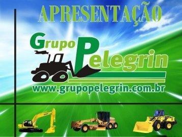Apresentação PDF - Grupo Pelegrin