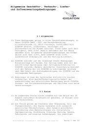 und Softwarewartungsbedingungen - Gigaton GmbH