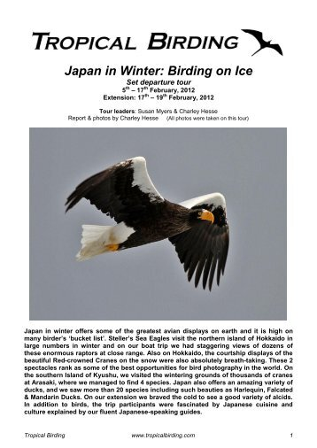 Click this link to view the full report in PDF format ... - Tropical Birding