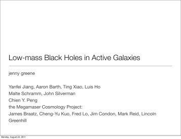 Low-Mass Black Holes in AGNs