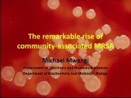 community-associated MRSA