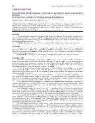 ARTÍCULO ORIGINAL Feocromocitoma. Manejo ... - SciELO