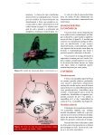 PRAGAS - Ceinfo - Page 2