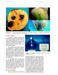 PRAGAS - Ceinfo - Page 3