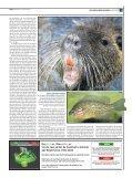 Espècies invasores - Page 3