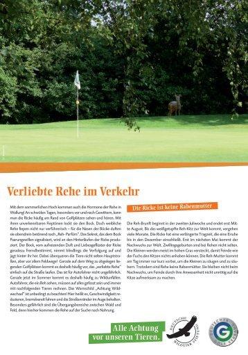 Tier des Monats: Reh - Golfpark Schloss Wilkendorf