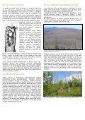 Národní park pod tlakem kůrovce - Greenpeace-Gruppe München - Page 3