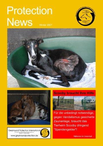 Protection News - Greyhound Protection International