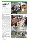 Protection News - Greyhound Protection International - Seite 7