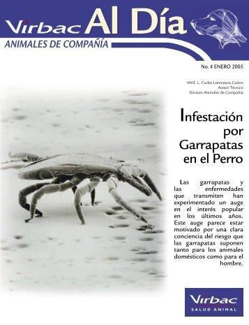 Infestación por garrapatas en el perro - LaboratorioUniversal.com