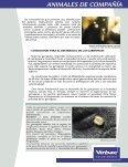 Infestación por garrapatas en el perro - LaboratorioUniversal.com - Page 5