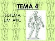 TEMA 4 - Colegio Sagrada Familia de Manises