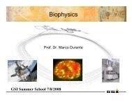 Biophysics - GSI