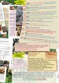 Uniquement par abonnement - Le lien créatif - Page 7