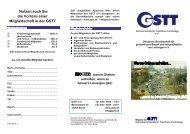 20101007 Flyer GSTT