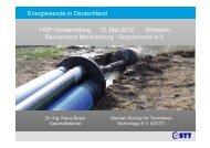 Ausbau der Stromhaupt- und -verteilnetze - Freileitungen ... - GSTT