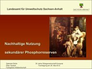 Fachvortrag Phosphorreserven (PDF-Datei) herunterladen