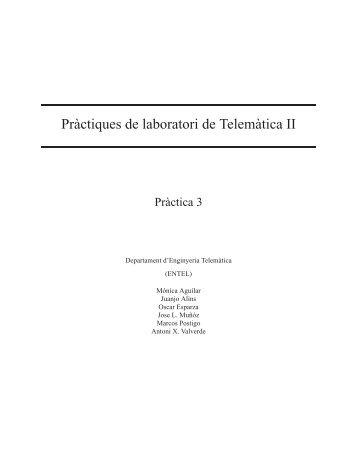 Pràctiques de laboratori de Telemàtica II - UPC