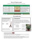 Download-Version - Rosenhof- Schultheis - Seite 3