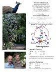 Download-Version - Rosenhof- Schultheis - Seite 5