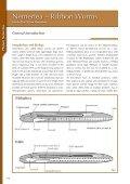 Nemertea - Marine Benthic Fauna of Chilean Patagonia - Page 2