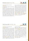 Nemertea - Marine Benthic Fauna of Chilean Patagonia - Page 5