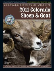 Colorado Division of Wildlife 2011 Sheep and Goat brochure