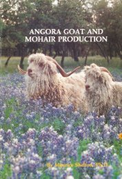 Angora Goat and Mohair Production - Texas A&M AgriLife Research ...