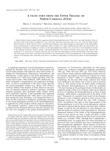 usa - American Journal of Botany
