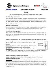 Eigenschaften von Säuren - Gymnasium Sulingen