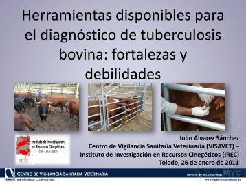 Herramientas disponibles para el diagnóstico de tuberculosis bovina