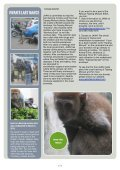 JAAN NEWS 2012 JAN FEB MARCH - Jakarta Animal Aid Network - Page 3