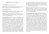 Bacaba ( Mart.) Oenocarpus bacaba - Embrapa Rondônia