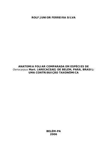 rolf junior ferreira silva - Mestrado em Botânica - Ufra