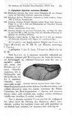 Die Ausbeute der deutschen Chaco-Expedition - Seite 3