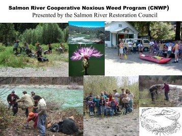 Salmon River Cooperative noxious weed program, part 1 - Cal-IPC