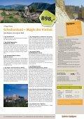 BUSRUNDREISEN 2011 - Haida-Reisen - Seite 3