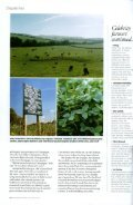 Waitrose Magazine - LaHave Forests - Page 4