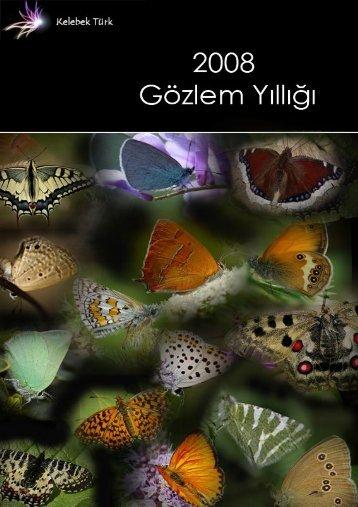 2008 Gözlem Raporu - Kelebek-Türk