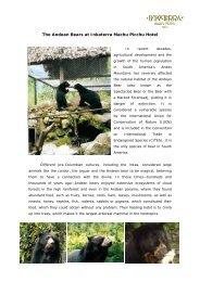 The Andean Bears at Inkaterra Machu Picchu Hotel