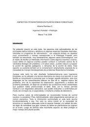 aspectos fitosanitarios en plantaciones forestales - Semillas