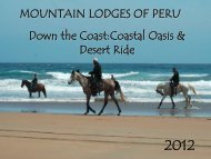 Down the Coast: Nazca Lines & Oasis Ride 2010 - Mountain Lodges ...