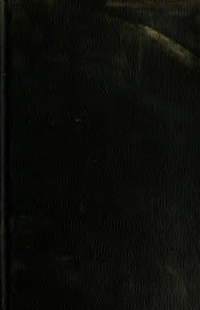 Nite Ize PETLIT-élégant DEL collier lumière-chaux patte