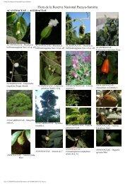 Flora de la Reserva Nacional Pacaya-Samiria