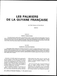 les palmiers de la guyane française - Bois et forêts des tropiques