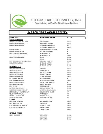 MARCH 2013 AVAILABILITY - Storm Lake Growers