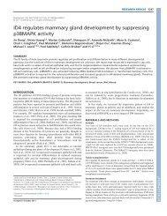 ID4 regulates mammary gland development by suppressing ...